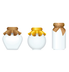 set of glass jars for canning and preserving vector image vector image