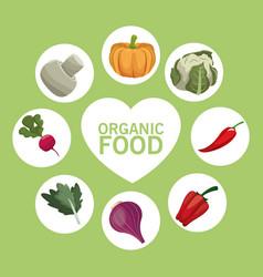organic food nutrition raw menu vector image