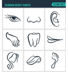 Set of modern icons Human body parts eyes vector image