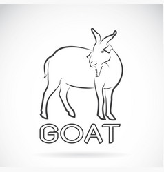 a goat on white background wild animals vector image