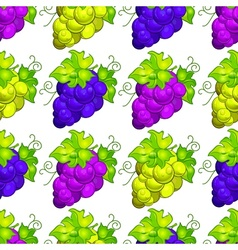 Cluster grapes seamless vector