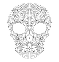 floral skull on white background vector image