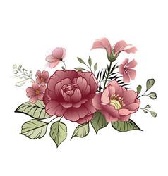 flower design elements elegant card vector image