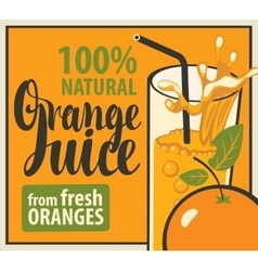 glass of fresh orange juice vector image
