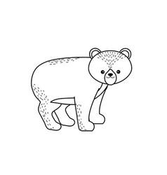 Line cute bear wild animal icon vector