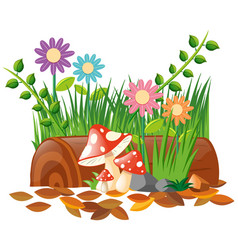 mushroom and flowers in garden vector image