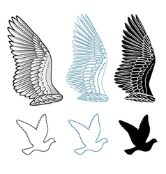 Pigeon wings and dove linear silhouette vector