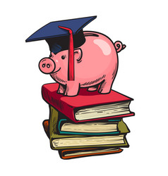 piggy bank in graduation hat on stack books vector image