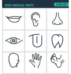 Set of modern icons Body medical parts vector image
