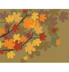 Orange Autumn Maple Leaves vector image vector image