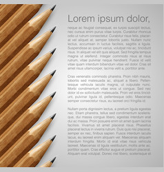 template with realistic pencils vector image
