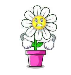 Angry daisy flower mascot cartoon vector