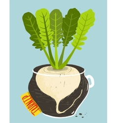 Growing Russian Turnip with Green Leaves in Pot vector