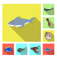 Isolated object of sea and animal sign set of sea vector