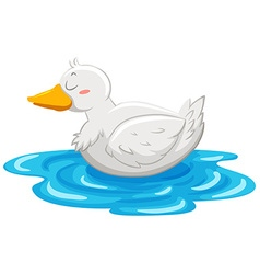 Little duck floating on water vector