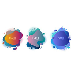 set abstract modern fluid shapes color badges vector image