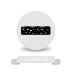 sponge icon vector image