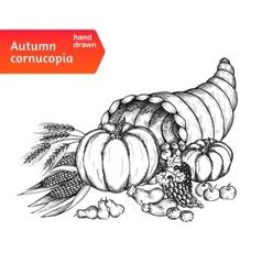 Cornucopia Horn of plenty with autumn harvest vector image vector image