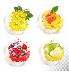 Collection of fruit in a milk and jiuce splash vector