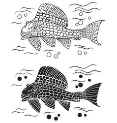 Decorative fish catfish vector