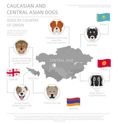 Dogs country origin caucasian and central vector