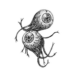 dotwork two eyeballs vector image