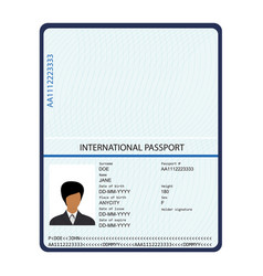 passport with biometric data identification vector image
