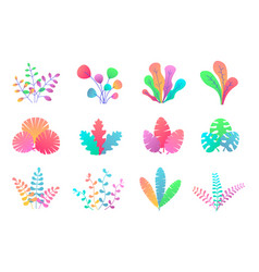 plant leaves set vector image