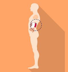 Spleen body location icon flat style vector