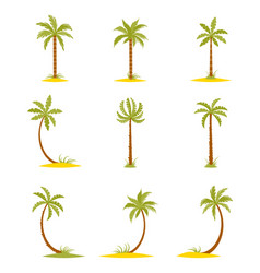 set of colored palms in a flat style vector image vector image