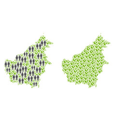 Demographics and floral borneo island map vector