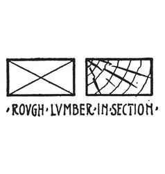 rough lumber in section material symbol other vector image