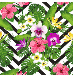 tropical flowers and palm leaves on zig zag vector image