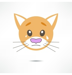 Crying cat vector image vector image