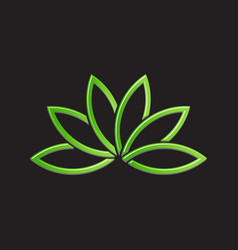 green lotus plant image vector image