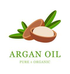 Argan oil skin care cosmetic seeds vector