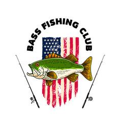 bass fishing club bass fish on american flag vector image