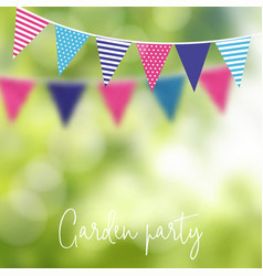 birthday garden party or brazilian june party vector image
