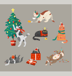 cats celebrating winter holiday vector image