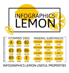 Infographics Lemon vector image