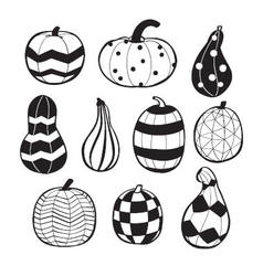 Pumpkins with patterns vector