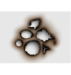 Ripped paper with burnt and flame on transparent vector