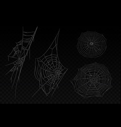 set isolated spider web halloween background vector image