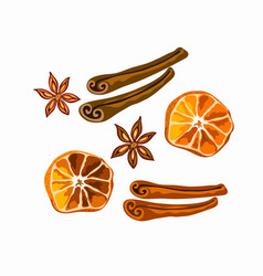 Spices for mulled wine and gingerbread isolated vector