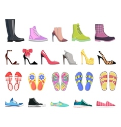 Collection of shoes types modern female footwear vector