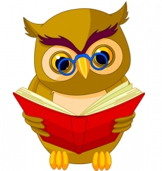 wise owl cartoon vector image vector image