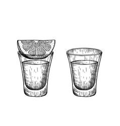 A shot tequila and a slice lemon vintage vector