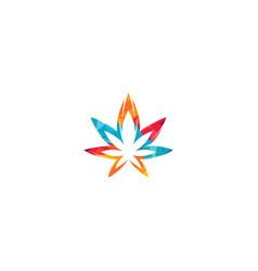 Cannabis leaf logo design vector