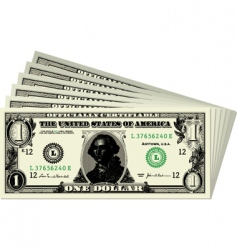 dollar bills vector image