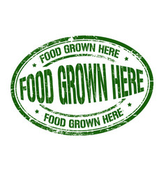 Food grown here grunge rubber stamp vector